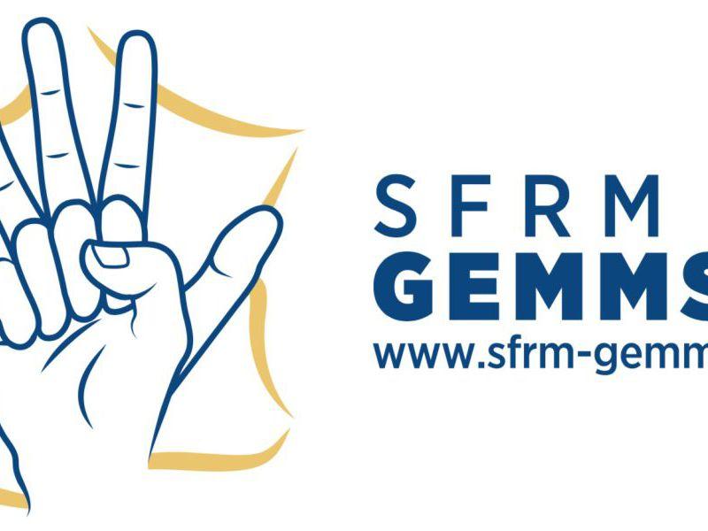 ASSEMBLEE GENERALE ORDINAIRE SFRM GEMMSOR